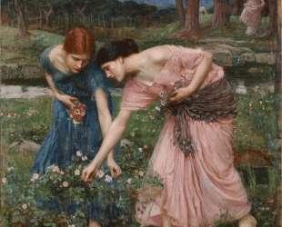 Срывайте розы поскорей — Джон Уильям Уотерхаус