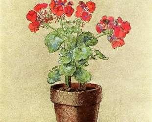 Geraniums — Одилон Редон