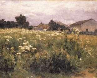 Grassy Field — Георгиос Яковидис