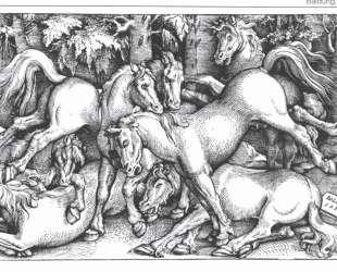 Семь дерущихся диких лошадей — Ханс Бальдунг