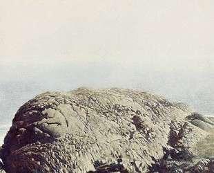 Gull Rock — Джейми Уайет