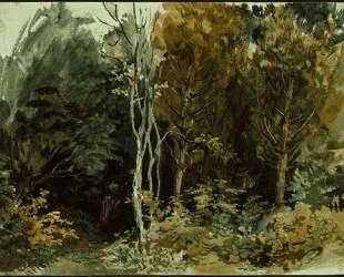 Опушка леса в Ноане — Эжен Делакруа