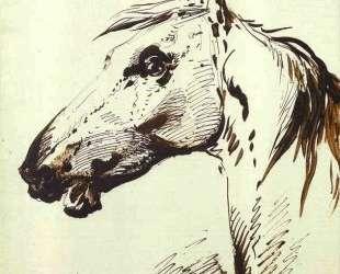 Head of a Horse — Александр Орловский