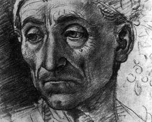 Head of a Poet Wearing a Cap — Лука Синьорелли