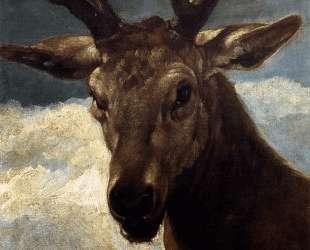 Head of a Stag — Диего Веласкес