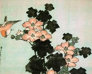 Hibiscus and Sparrow — Кацусика Хокусай