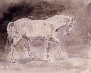 Лошадь — Эжен Делакруа