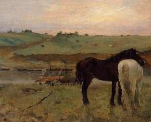 Лошади на лугу — Эдгар Дега