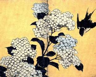 Hydrangea and Swallow — Кацусика Хокусай
