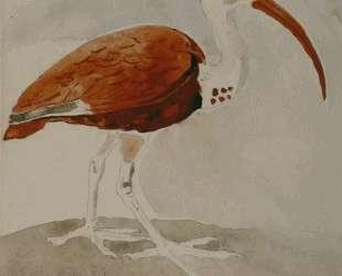 Ibis — Гюстав Моро