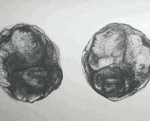 Ink Drawing — Хедда Штерн