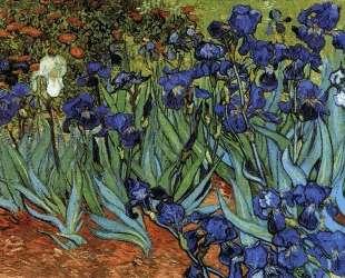 Irises — Винсент Ван Гог