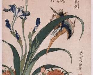 Kingfisher, carnation, iris — Кацусика Хокусай