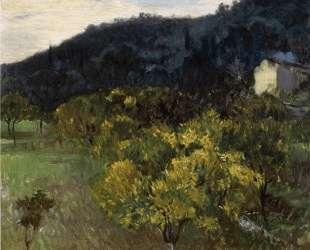 Landscape near Grasse — Джон Сингер Сарджент
