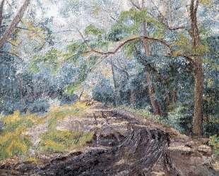 Пейзаж с дорогой — Давид Бурлюк