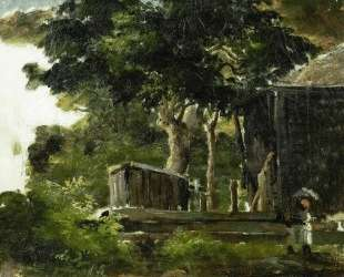 Landscape with House in the Woods in Saint Thomas, Antilles — Камиль Писсарро