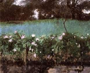 Landscape with Rose Trellis — Джон Сингер Сарджент