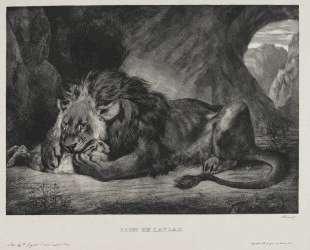 Львы Атласских гор — Эжен Делакруа
