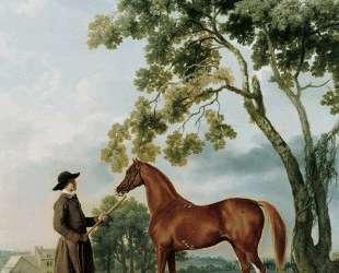 Lord Grosvenor's Arabian Stallion with a Groom — Джордж Стаббс