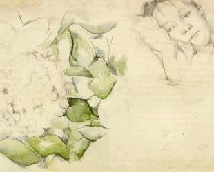 Madame Cezanne with Hortensias — Поль Сезанн