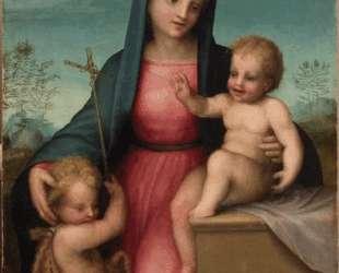 Madonna and Child with St. John the Baptist — Андреа дель Сарто
