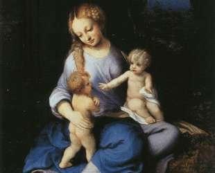 Мадонна с младенцем и маленьким Иоанном Крестителем — Корреджо
