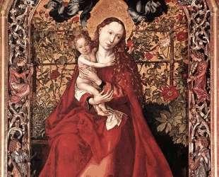 Madonna of the Rose Bush — Мартин Шонгауэр