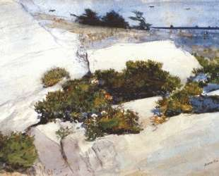 Maine Cliffs — Уинслоу Хомер