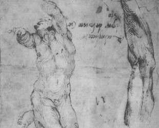Male nude and arm of bearded man — Микеланджело