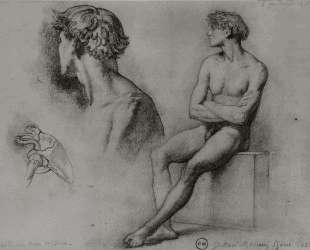 Male nude and other studies — Гюстав Моро