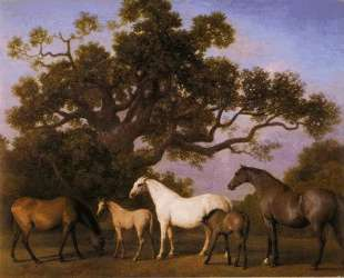 Mares and Foals under an Oak Tree — Джордж Стаббс