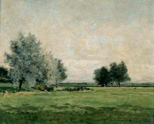 Meadow — Максим Мофра