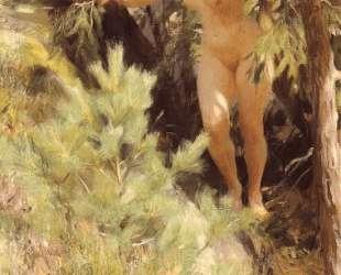 Nude under a fir — Андерс Цорн