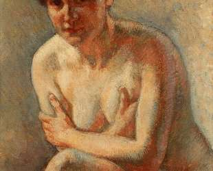 Nude Woman — Тео ван Рейссельберге