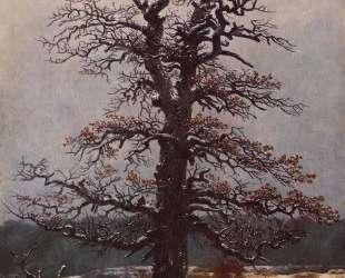 Oak tree in the snow — Каспар Давид Фридрих