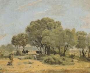 Olive trees in Spain — Фердинанд Ходлер