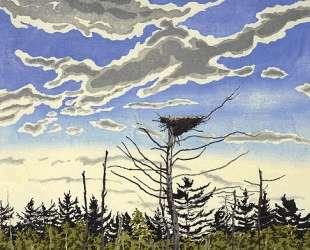 Osprey's Nest — Нил Уэлливер