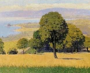 Outskirts of Lausanne — Феликс Валлотон