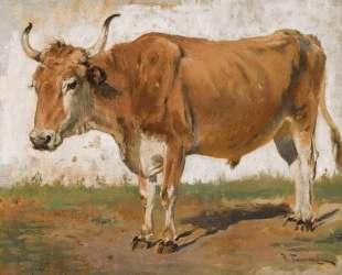 Ox — Николай Пимоненко