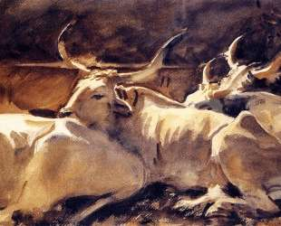 Oxen in Repose — Джон Сингер Сарджент