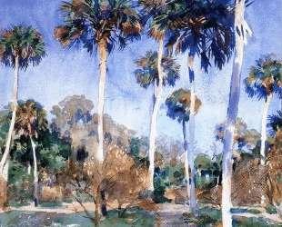 Palms — Джон Сингер Сарджент