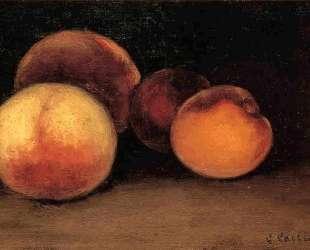 Peaches, Nectarines and Apricots — Гюстав Кайботт