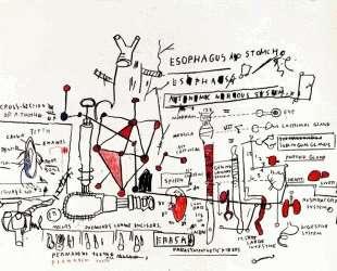 Язва желудка — Жан-Мишель Баския