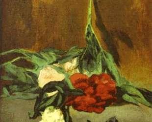 Peony stem and shears — Эдуард Мане