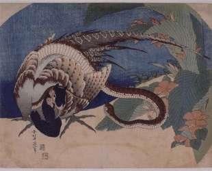 Pheasant and Snake — Кацусика Хокусай