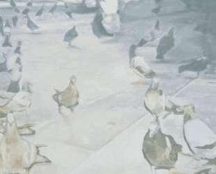 Pigeons — Люк Тёйманс