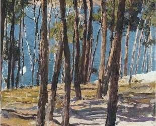 Pine Trees — Хоакин Соролья