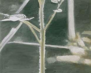 Plant — Люк Тёйманс