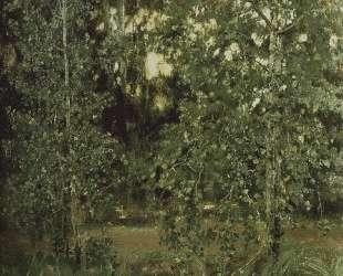 Pond in Ochtir — Виктор Васнецов