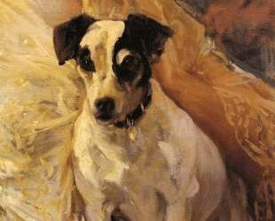 Portrait of a Jack Russell — Хоакин Соролья